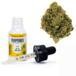 what are terpenes on CBD